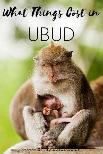 What Things Cost in Ubud Bali