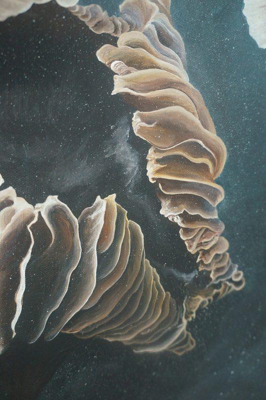 mushroom art, nature art, mushrooms