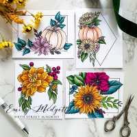 September Coloring Panel Release: Framed Florals, Volume 3!