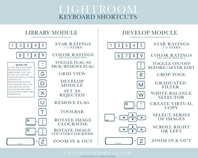 Lightroom Library Shortcuts | Emily Moore