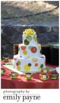 A Sweet Anniversary Party at Gundlach Bundschu, Napa
