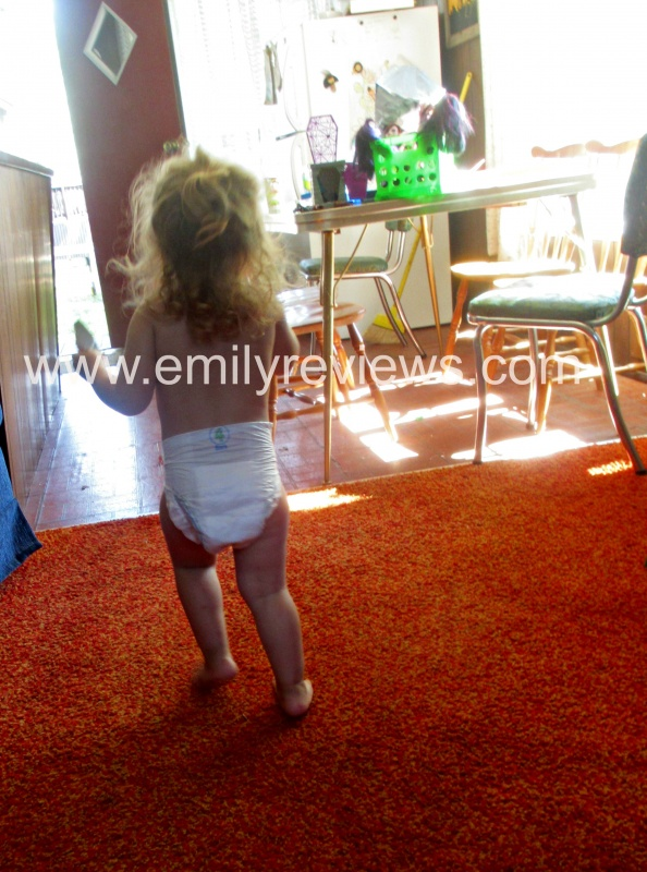 Kidgets Diapers Prices : kidgets, diapers, prices, Kidgets, Budget-Friendly, Diapers, Review, Emily, Reviews