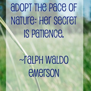 Nature quote from Ralph Waldo Emerson