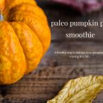 paleo pumpkin pie smoothie fall favorites