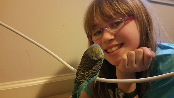Finding a Hand-raised Pet Parakeet | Emily is a teen on the Autism