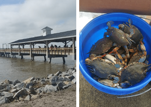 St. Simons Island: Family Weekend Adventure