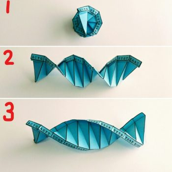 This Mortal Coil DNA Origami Instructions Part 7