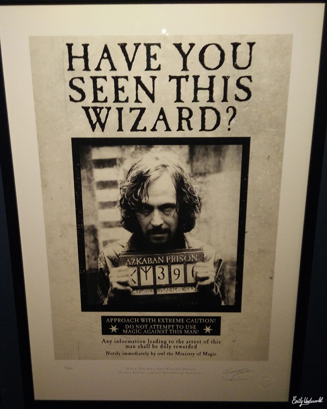 have-you-seen-this-wizard