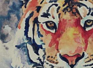 Tiger Head Watercolour Experiment