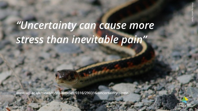 Uncertainty can cause more stress than inevitable pain