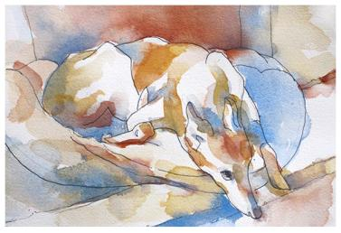 """watercolor, pencil on paper   7"""" x 10""""   donated to greyhound friends for life"""
