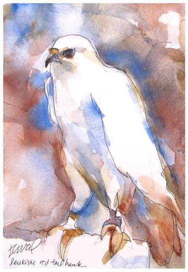 """watercolor, pencil on paper   7"""" 10""""   donated to Native Bird Connections"""