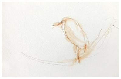 """watercolor pencil on paper 