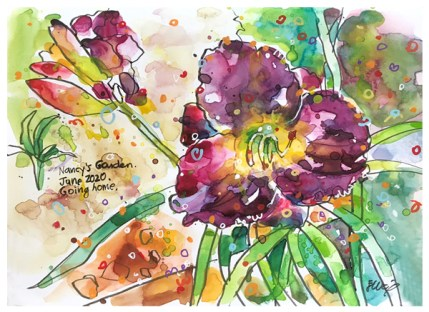 """watercolor, pen, acrylic ink on paper   7"""" x 10""""   $90"""