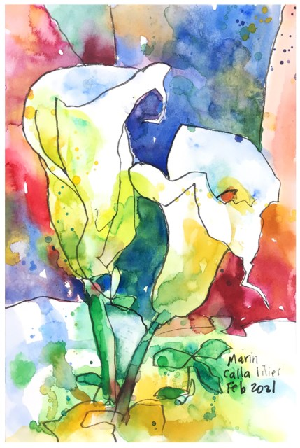 painting of Marin Lilies by Emily Weil