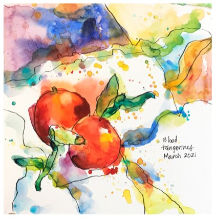 watercolor painting of blood tangerines by emily weil