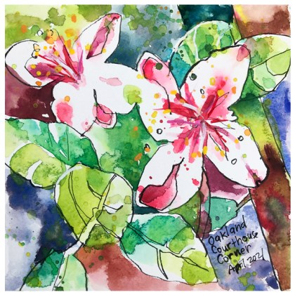 watercolor painting of oakland flowers by emily weil