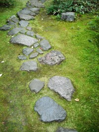 Kyoto, Japan, stepping stones  EMILY WHEELER