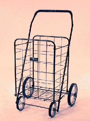 Current favorite NYC thing: The granny cart.