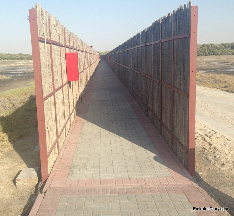ras-al-khor-wildlife-santuary-pictures-02