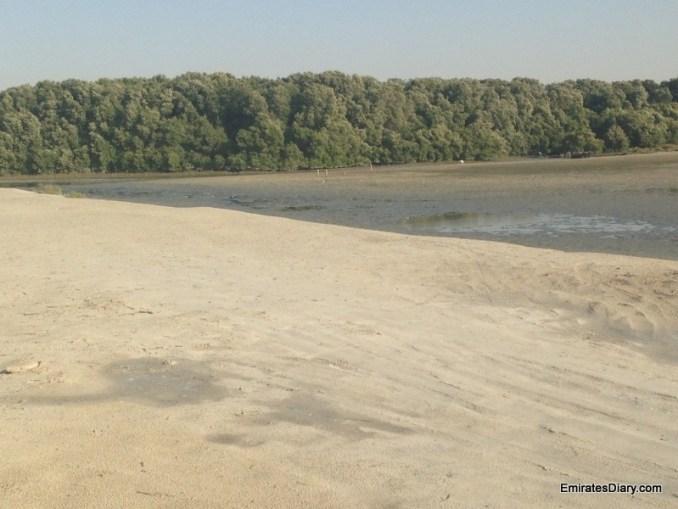 ras-al-khor-wildlife-santuary-pictures-10