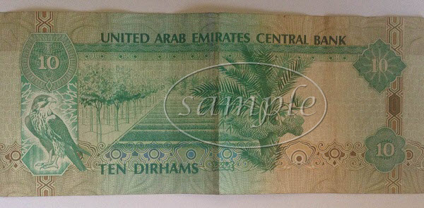 UAE 10 dirham note back