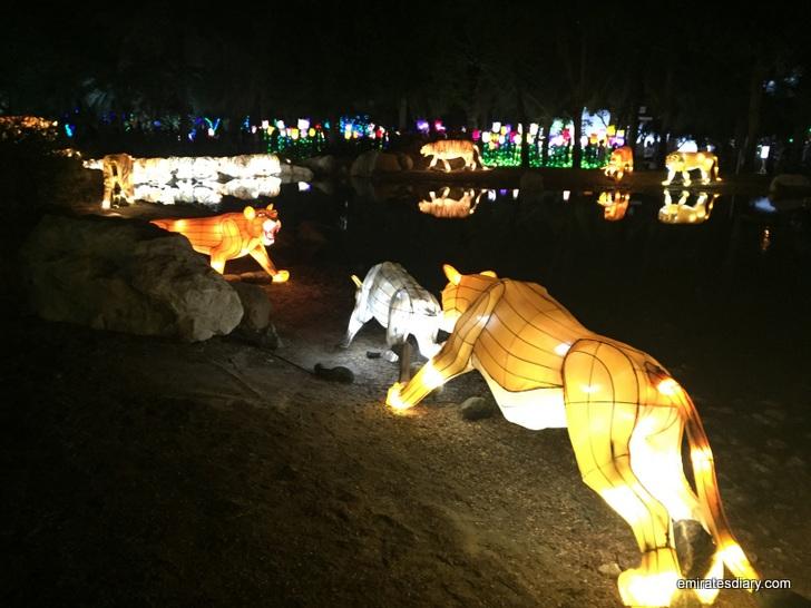 dubai-garden-glow-pictures-images-2015-emirates-diary-102