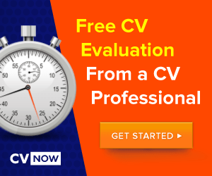 cvnow-job-search-guide-300x250