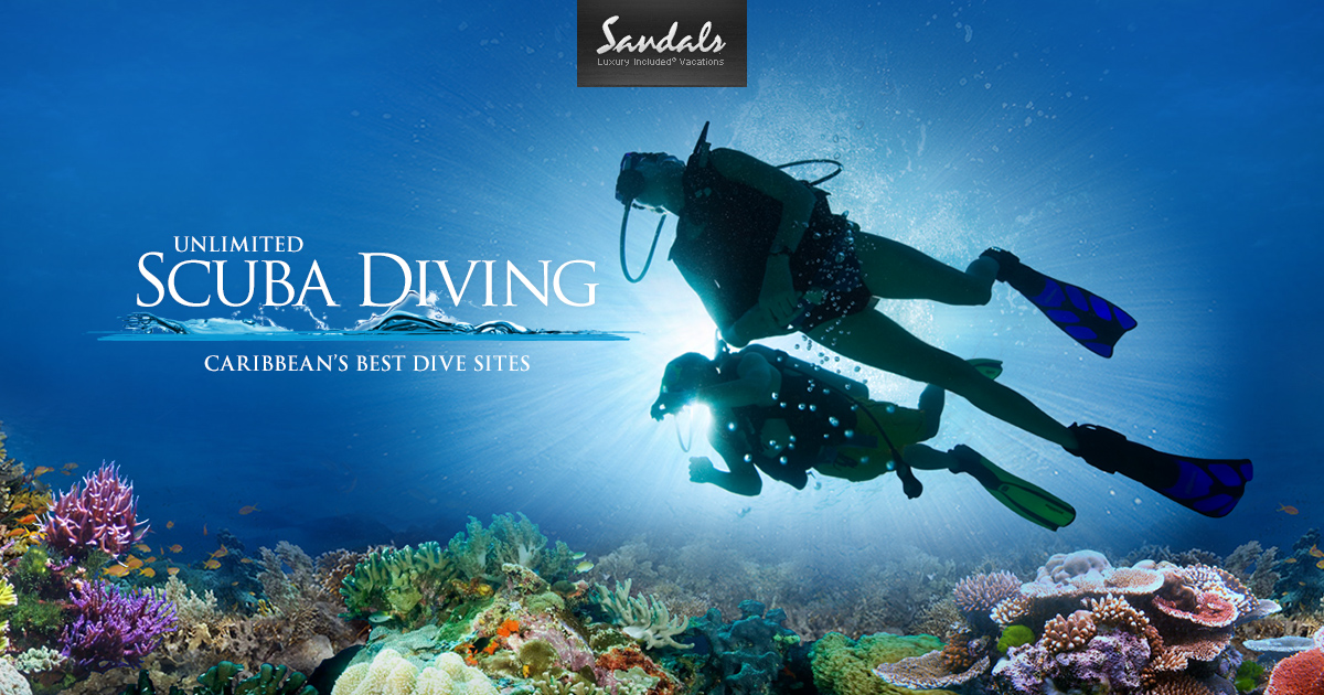 Underwater Scuba Diving Trips in the Caribbean  Sandals