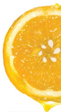 MindTap Orange