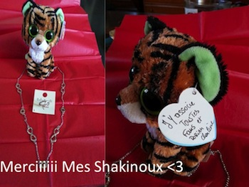 shakinoux
