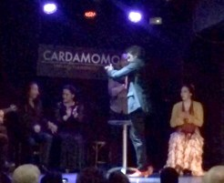 Cardamomo Flamenco Show Guitar Madrid Birthday