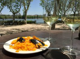 Madrid Sunshine Casa do Campo Walking Park Birthday Lake Birds Paella White Wine
