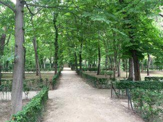 Palacio de Cristal Madrid Retiro Park Walk Sunshine Forest