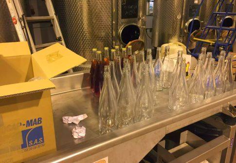 Bolney Wine Estate Sussex Tasting English Vineyard Valentines Sparkling Lunch Vines Grapes England Bottling