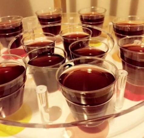 Blueberry Cheesecake Hen Do Raw Paleo Cashew SCD Brazil Clean Eating