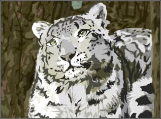 Snow Leopard Rests