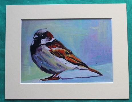 Big Sparrow 1