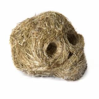 1. grass skull_medium
