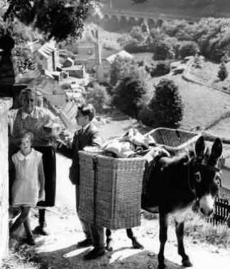 Chalford_donkey_1935 (1)