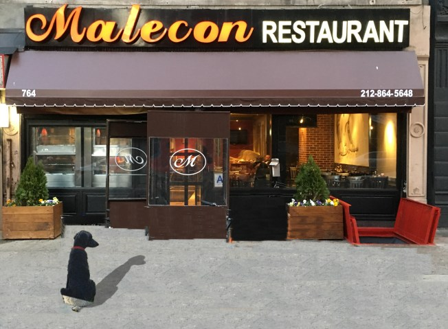 HUDSON in FRONT OF COFFEE SHOP cropped