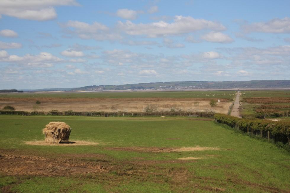 The saltmarsh by Weobly Castle