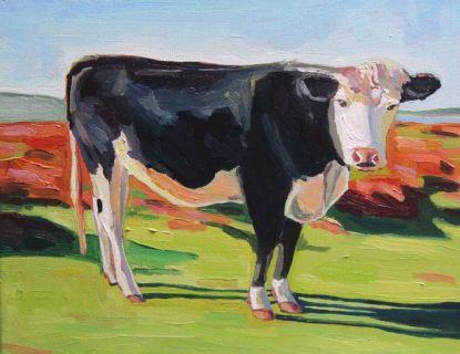 Cefn Bryn Cow