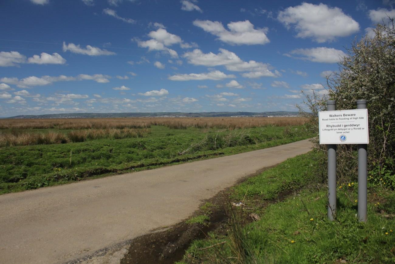 Llanridian Marsh