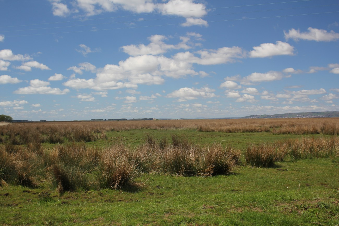 North Gower Marshland