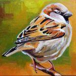 Wee Sparrow