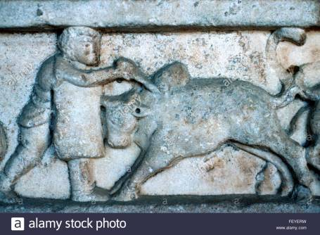 ancient-greek-or-roman-marble-carving-or-bas-relief-of-a-gladiator-FEYERW