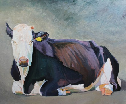 The Sitting, a portrait of a cow in oils by Emma Cownie