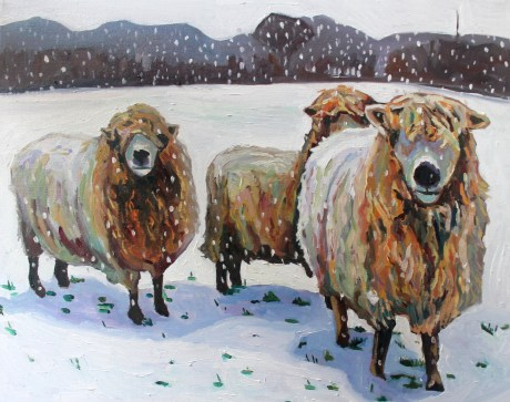 Christmas card of sheep in snow