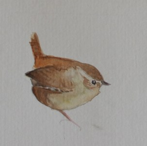 Wren watercolour